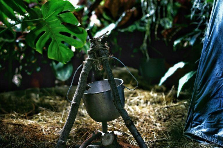Bushcraft para sobrevivir