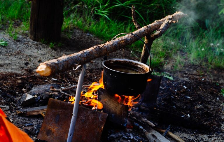 bushcraft y supervivencia guía