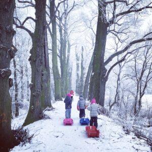 como llevar a los niños a la nieve