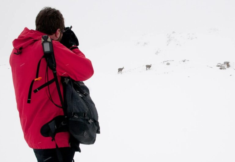 10 consejos para una fotografía invernal exitosa