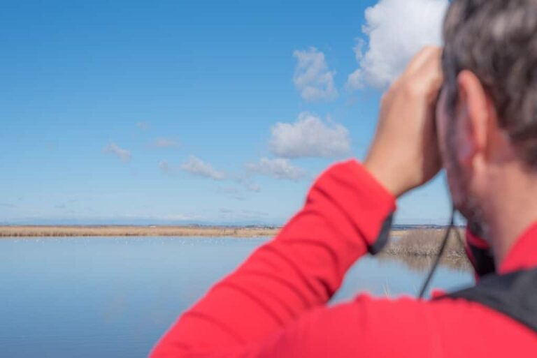 ¿Cómo elegir los prismáticos de senderismo adecuados?
